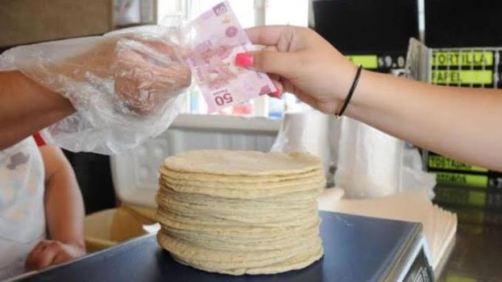Buscará ODECO industriales de la tortilla para que aumento no afecte a consumidores