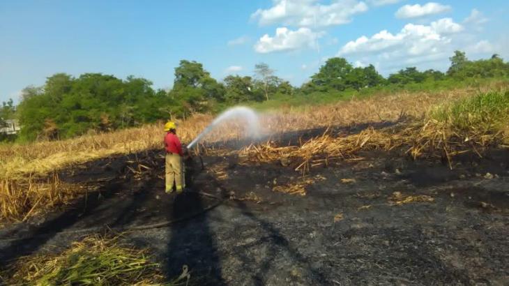 Declaran sofocados incendios en Pantanos de Centla
