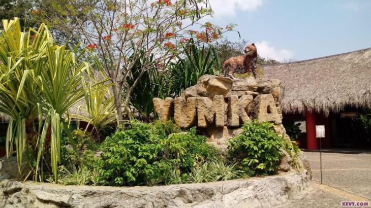 Mantiene Yumká en cuarentena a 10 nuevas especies para su adaptación