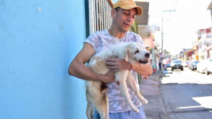 Pipo, el perrito que ya no puede caminar pero su amo se las ingenió para transportarlo de un lugar a otro