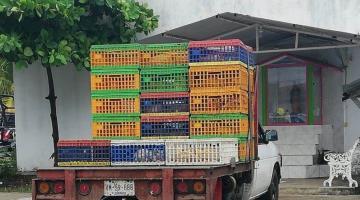 Detienen a distribuidor de pollos por evadir filtro sanitario en Centla