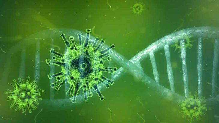 56% de las pruebas de Covid-19 en México dan positivo, alerta científico de Harvard