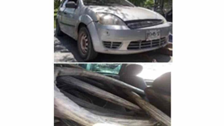 Roban cables a subestación de Telmex en Brisas del Carrizal