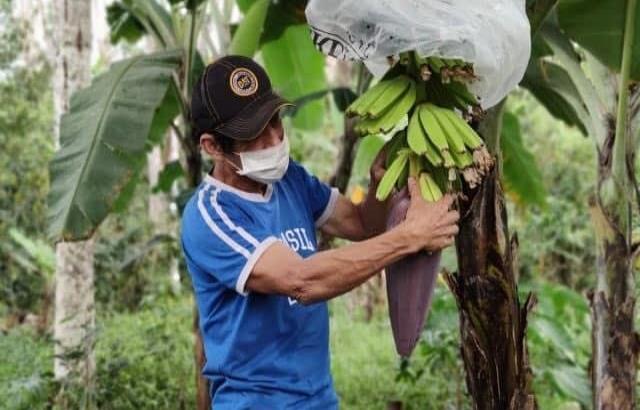 Advierte la ONU que 80 millones de personas en América Latina sufrirán hambre tras la epidemia del Covid-19