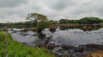 Denuncian vigencia de derrame de hidrocarburos en ranchería de Huimanguillo