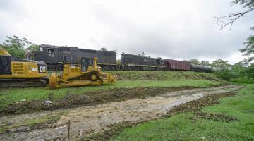 Solo el 40% de la ruta del Tren Maya será totalmente eléctrico, admite FONATUR