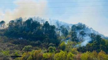 Reporta CONAFOR 91 incendios forestales activos en 22 entidades del País; Guerrero mantiene el mayor número de casos