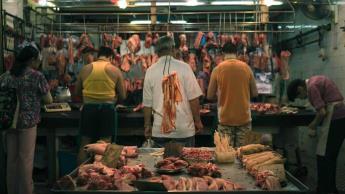 Pide OMS no vender mamíferos salvajes para consumo humano
