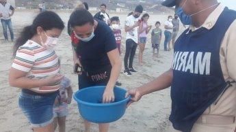 Marina y habitantes de Salina Cruz, Oaxaca liberan crías de tortuga golfina