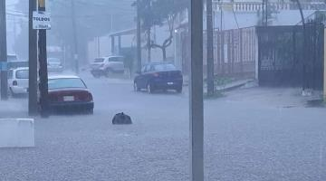 Sufre Villahermosa estragos por intensa lluvia vespertina