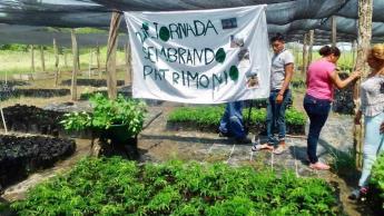 Tabasco llegará a casi 124 millones de árboles de reforestación de Sembrando Vida, destaca Bienestar