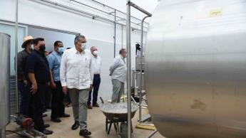 Centro de Acopio Lechero en Macuspana produciría más de 30 mil litros diarios; se instalarán 10 más en Tabasco