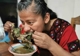 Diputada federal de Morena presume en sus redes sociales la degustación de un caldo de rata de monte