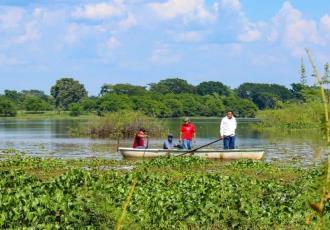 """Reporta Ayuntamiento de Balancán muerte de manatí en laguna """"Leona Vicario"""""""